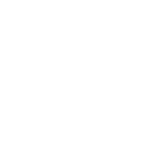 aaa logo white